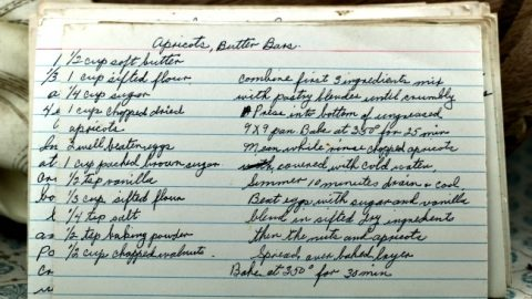 Apricot Butter Bars