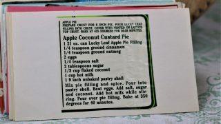 Apple Coconut Custard Pie