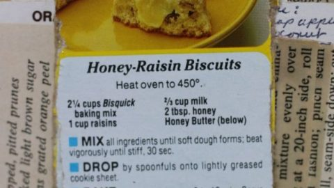 Honey Raisin Biscuits scaled